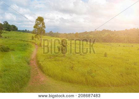 Green meadow in mountain with nature pathway and sunlight.Tropical green field with hill and sky background