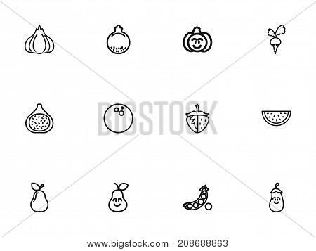 Set Of 12 Editable Cookware Outline Icons. Includes Symbols Such As Sliced Watermelon, Gourd, Berry And More