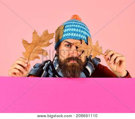 Autumn And Fallen Leaves Season Concept. Man In Warm Hat