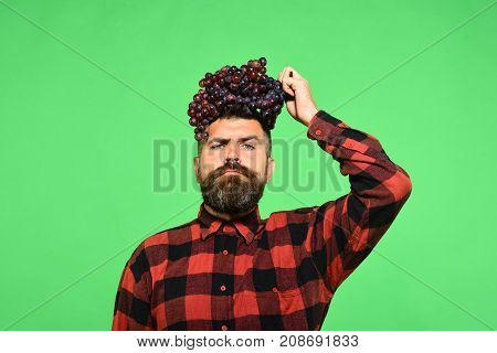 Man With Beard Holds Bunch Of Purple Grapes On Head