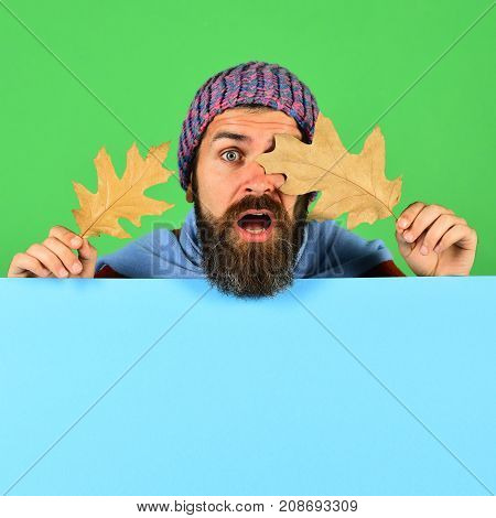 Man In Warm Hat Closes Eyes With Oak Tree Leaves