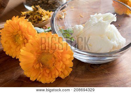 Calendula Flowers With Calendula Cream In A Glass Bowl