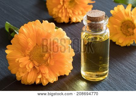 A Bottle Of Calendula Essential Oil On A Dark Background