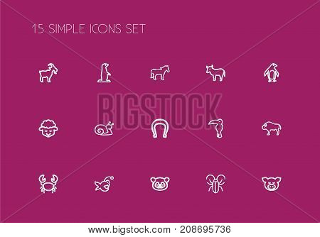 Set Of 15 Editable Animal Outline Icons. Includes Symbols Such As Escargot, Crab, Kine And More