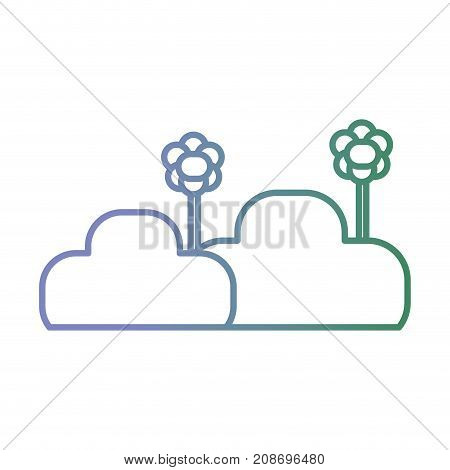 line bush plant with flower and petals vector illustration