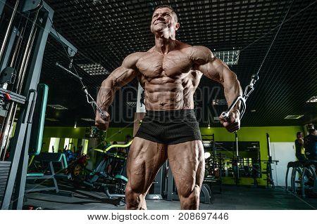 Brutal Caucasian Bodybuilder Training Chest In Gym