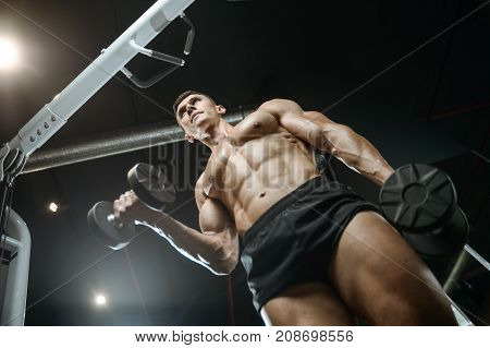 Handsome Model Young Man Training Arms In Gym
