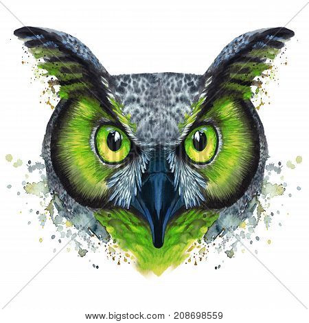 Drawing painted by watercolor night bird of prey owl, with bright coloring green eyes