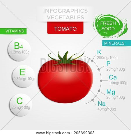 Healthy vegetables infographics with tomato vitamins and minerals. Quality vector illustration about diet eco food benefits of vegan and nutrition concept.