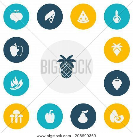 Set Of 13 Editable Dessert Icons. Includes Symbols Such As Soybean, Paprika, Tropical Fruit And More
