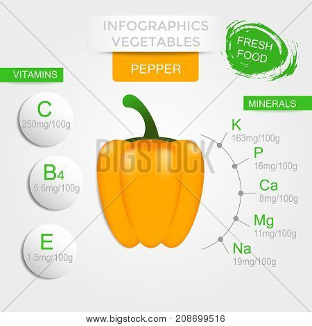 Healthy vegetables infographics with pepper vitamins and minerals. Quality vector illustration about diet eco food benefits of vegan and nutrition concept.