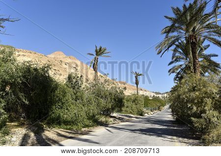 Asphalt road in Ein Gedi National park Israel