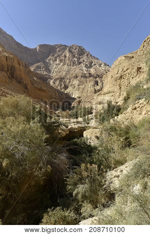 Deep gorge in Ein Gedi National park Israel
