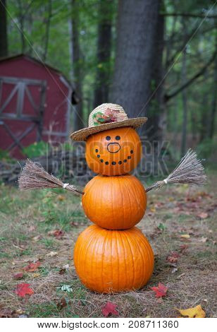 Cure pumpkin man in the woods