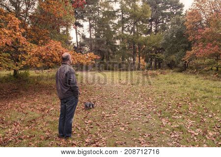 PeopleMiddle aged man walking dog in autumn woodland