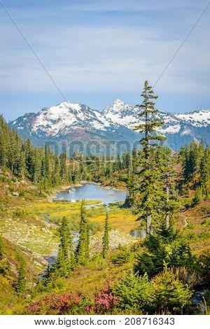 Beautiful Mountain River at the Bagley Lake Trail Park. Mount Baker, Washington, USA.