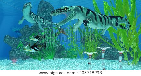 Dakosaurus Marine Habitat 3d illustration - Two Picasso Triggerfish swim away from the Dakosaurus marine reptiles who may threaten their existence.