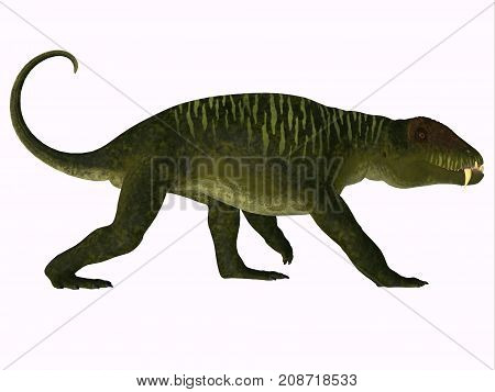 Doliosauriscus Dinosaur Side Profile 3d illustration - Doliosauriscus is an extinct genus of therapsid carnivorous dinosaur that lived in Russia in the Permian Period.