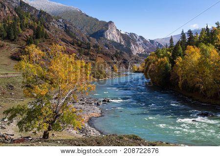 Katun river in the Altai Mountains, Altai Republic, Russia.