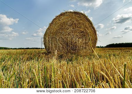 Beautiful Landscape With Straw Bales In Autumn