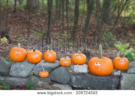 Googly eyed pumpkins sitting on rocks