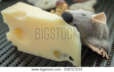 Toy Mouse eats cheese in kitchen close up