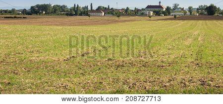 Farming ground crop land panoramic view in springtime