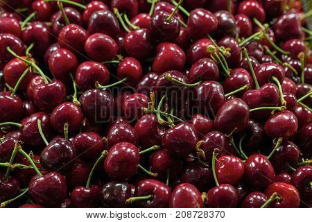Dark Red Sweet Cherries at Fruit Stall Closeup