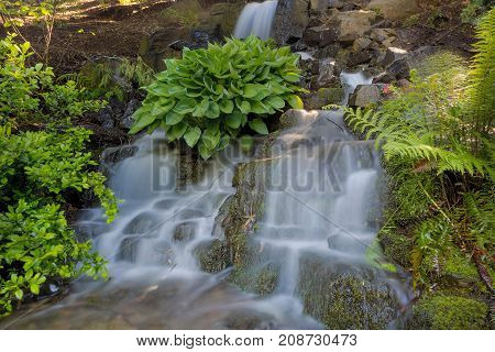 Waterfall at Crystal Springs Garden in Portland Oregon during Spring Season