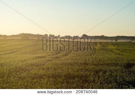 Morning Mist Over Fields