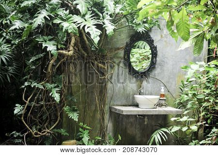 The sink is in the garden, Fresh green leaves on background in the garden sunlight. Texture of green leaves, Fern leaf in Forest. Garden and Green wall.