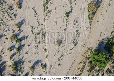 Sandy Desert Wash