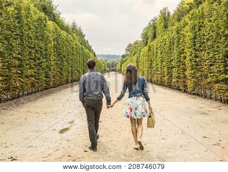 Rear image of a young couple walking hand in hand in a park in autumn.