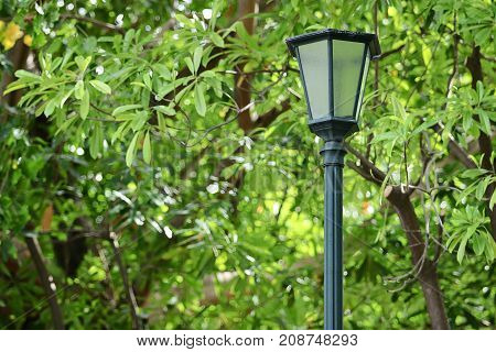 Outdoor old lantern on green nature in the park background.