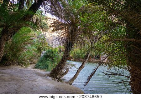 View of river near Preveli beach river and palm forest southern Crete Greece