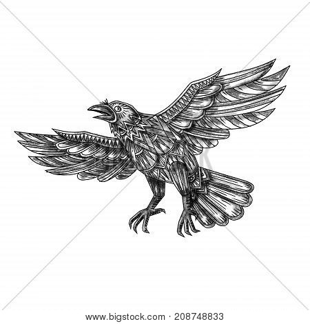 Tattoo style illustration of a raven blackbird or crow flying up made out of geometric shape or mandala on isolated background.