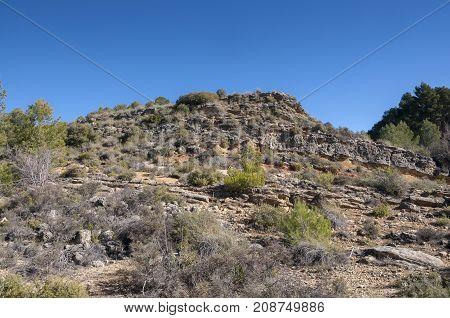 Mediterranean shrublands over limestones and sandstones with esparto lavender rosemary kermes oak junipers etc. Photo taken in Buendia Cuenca Spain.