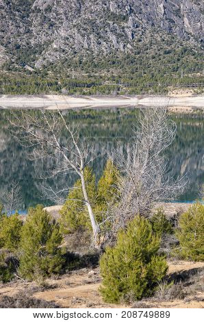 Views of Buendia Reservoir in the upper waters of the river Tagus Cuenca Castilla La Mancha Spain. The surface area of the reservoir measures 8194 hectares and it can hold a total of 1638 cubic hectometres.