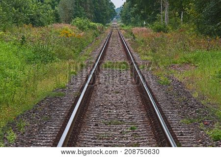 Railway track. It is located on an embankment made of stone crushed stone. Both sides grow grass. In the further distance leafy trees. Grass and leaves on the trees are green. It's daytime.
