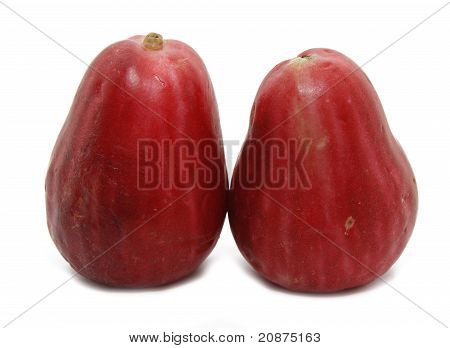 malay apple