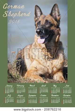 Wall Calendar Poster for 2018 Year. Design Print.