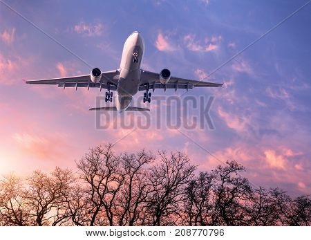 Landing airplane. Landscape with white passenger airplane is flying in the purple sky with clouds and trees at colorful sunset. Travel background. Passenger airliner. Commercial aircraft. Business