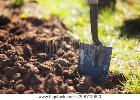Closeup: shovel at the ground. Garden works concept. Digging field.