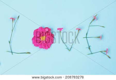 Word LOVE made of flowers on light blue backgroung. carnation and wild rose flowers.
