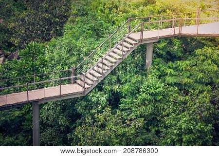 Side view wooden sky walk or walkway cross over treetop surrounded with green natural and sunlight in vintage style.