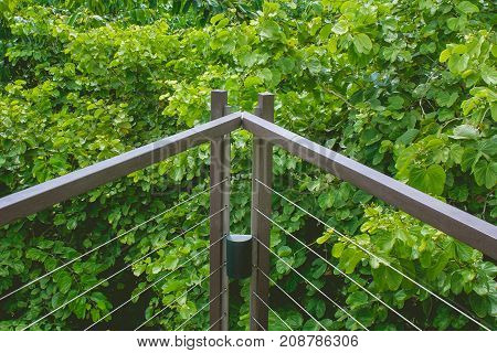 Close up metal railing of wooden sky walk or walkway cross over treetop surrounded with green natural and sunlight in vintage style.