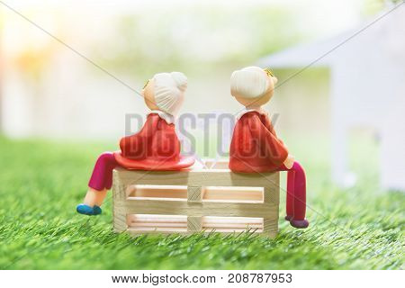 Senior couple doll sitting on grass green background is home