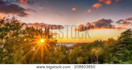 Sun sparkle through the trees along the Black Sea Coast in Sochi Russia. Plam trees and a beautiful sky are the backdrops.