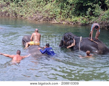 KO CHANG ISLAND THAILAND - JANUARY 162013: Men bathing in a mountain river with elephants