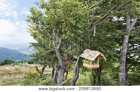 At the top of the mountain in the branches of a tree hangs a wooden bird feeder close-up against the backdrop of a mountain landscape